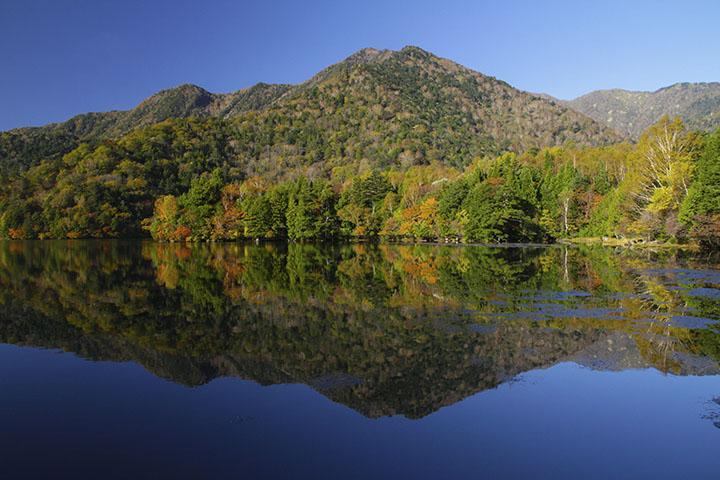 湯の湖/奥日光の紅葉~四季の山...